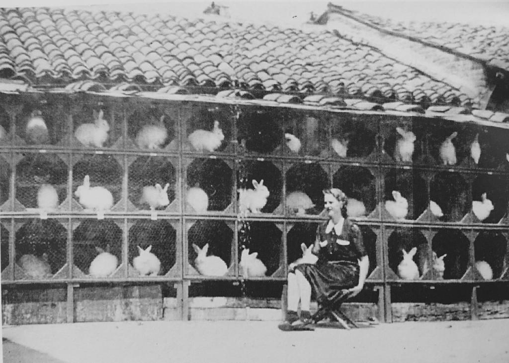 """Anonimo, """"Donna con conigli"""", Santhià, 1943, Santhià (collezione privata)"""