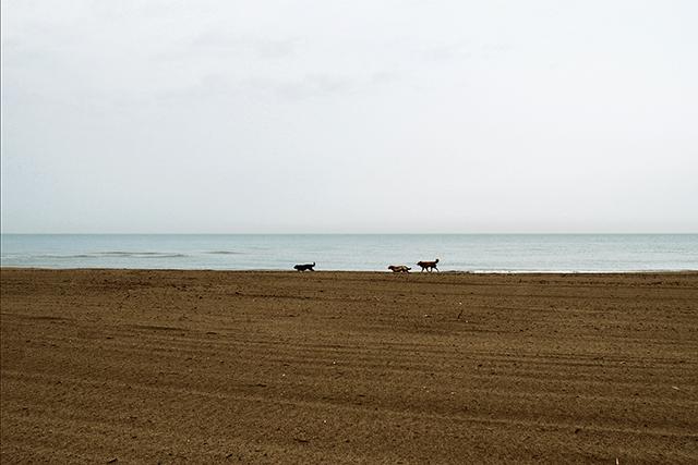 """© Mauro Quirini, dalla serie """"Non ricordo dove"""", 23 aprile 2014"""